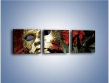 Obraz na płótnie – Maska pełna tajemnicy – trzyczęściowy O252W1