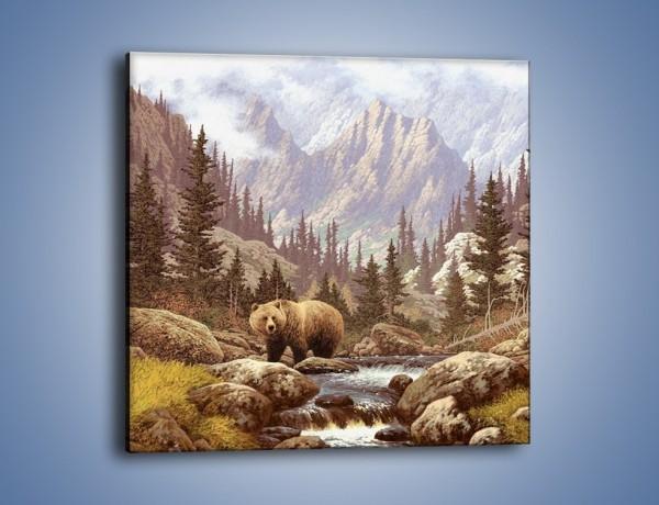 Obraz na płótnie – Uwaga na niedźwiedzia – jednoczęściowy kwadratowy GR183