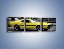 Obraz na płótnie – Ford Mustang GT350 – trzyczęściowy TM043W1