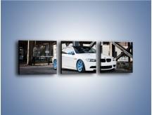 Obraz na płótnie – BMW E92 M3 Coupe pod starym mostem – trzyczęściowy TM088W1