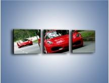 Obraz na płótnie – Ferrari F430 i Ferrari Enzo – trzyczęściowy TM090W1
