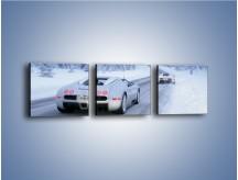 Obraz na płótnie – Bugatti Veyron w śniegu – trzyczęściowy TM134W1