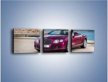 Obraz na płótnie – Bentley Continental Speed GT – trzyczęściowy TM187W1