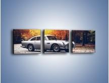 Obraz na płótnie – Aston Martin DB5 – trzyczęściowy TM208W1