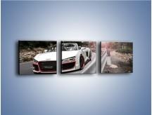 Obraz na płótnie – Audi R8 V10 Spyder – trzyczęściowy TM209W1