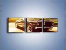 Obraz na płótnie – Ford Mustang na drodze – trzyczęściowy TM214W1
