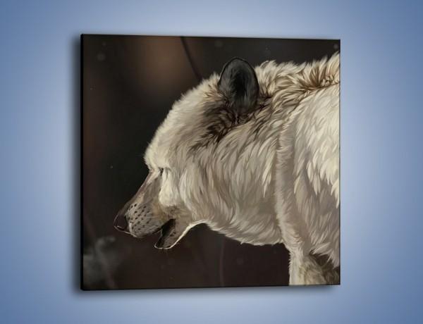 Obraz na płótnie – Uważne spojrzenie wilka – jednoczęściowy kwadratowy GR212