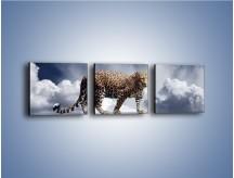 Obraz na płótnie – Lampart na szklanej tafli – trzyczęściowy Z110W1