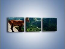 Obraz na płótnie – Kozica w górskiej panoramie – trzyczęściowy Z260W1