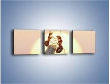Obraz na płótnie – Mrówki w trakcie zabawy – trzyczęściowy Z319W1