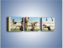 Obraz na płótnie – Mecz mrówkowych drużyn – trzyczęściowy Z327W1