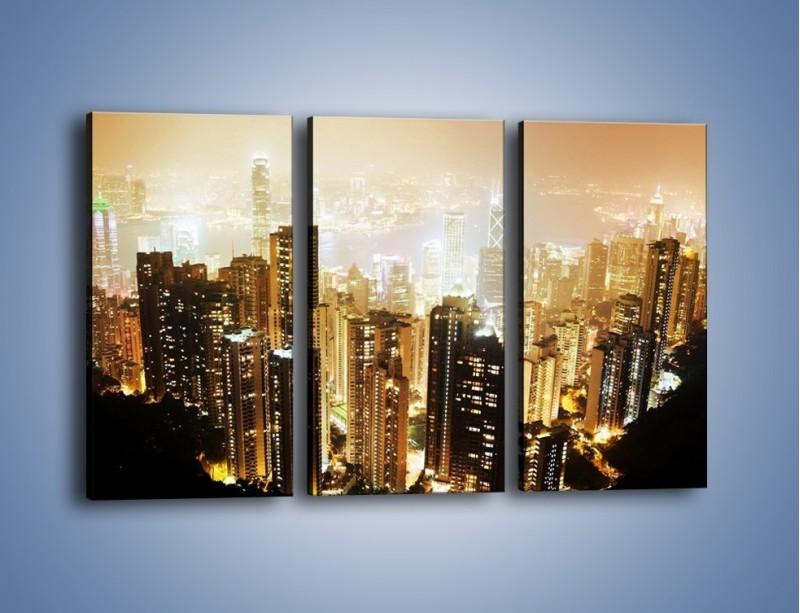Obraz na płótnie – Miasto widziane z góry – trzyczęściowy AM007W2