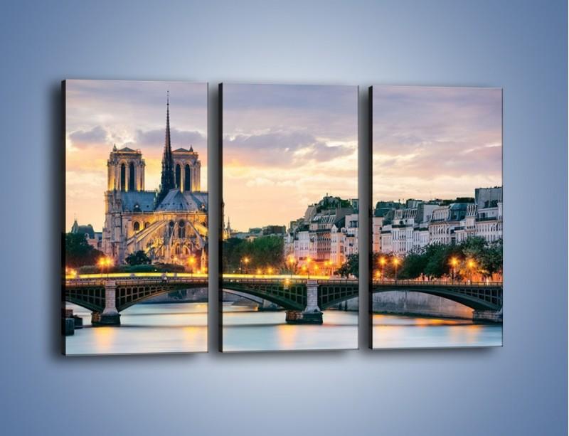 Obraz na płótnie – Katedra Notre Dame – trzyczęściowy AM454W2