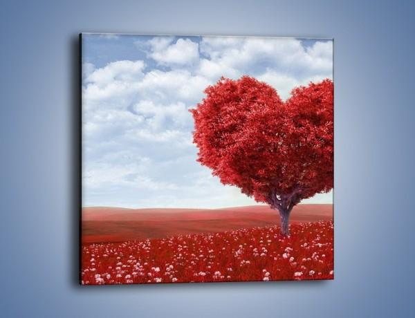 Obraz na płótnie – Polaną w stronę miłości – jednoczęściowy kwadratowy GR249