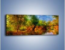 Obraz na płótnie – Drzewa w wodnym lustrze – jednoczęściowy panoramiczny GR010