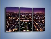 Obraz na płótnie – Panorama Paryża z Wieży Eiffla – trzyczęściowy AM764W2