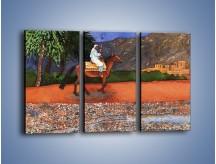 Obraz na płótnie – Arabski szejk na koniu – trzyczęściowy GR052W2