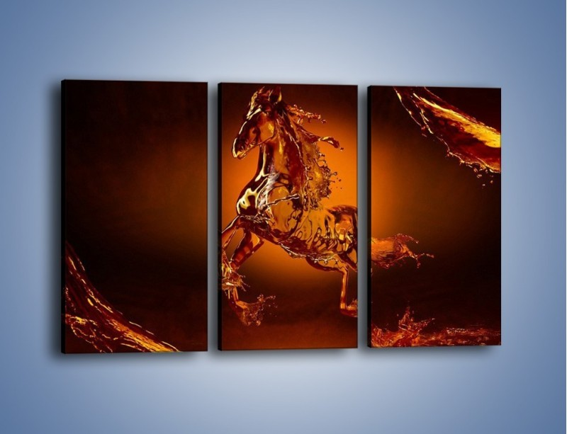 Obraz na płótnie – Wodny koń w mocnym świetle – trzyczęściowy GR228W2