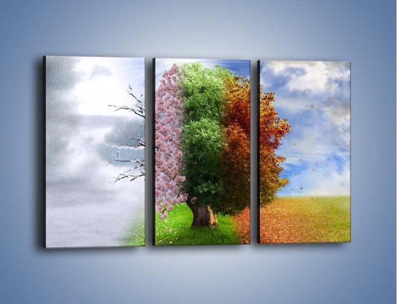 Obraz na płótnie – Cztery pory roku – trzyczęściowy GR333W2