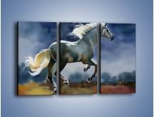 Obraz na płótnie – Bieg z koniem przez noc – trzyczęściowy GR339W2