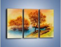 Obraz na płótnie – Drzewa nad samą wodą – trzyczęściowy GR352W2