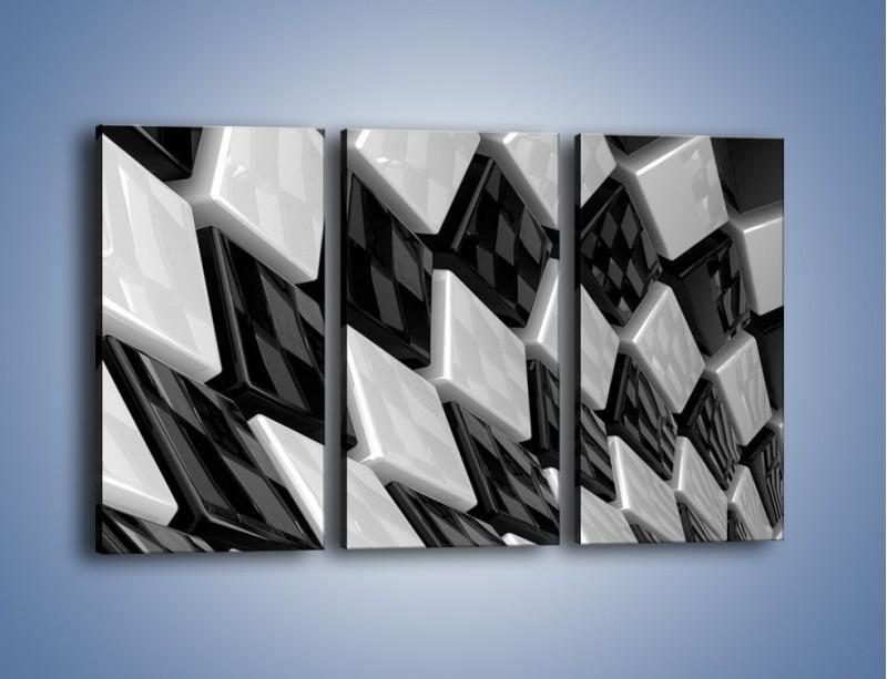 Obraz na płótnie – Czarne czy białe – trzyczęściowy GR425W2