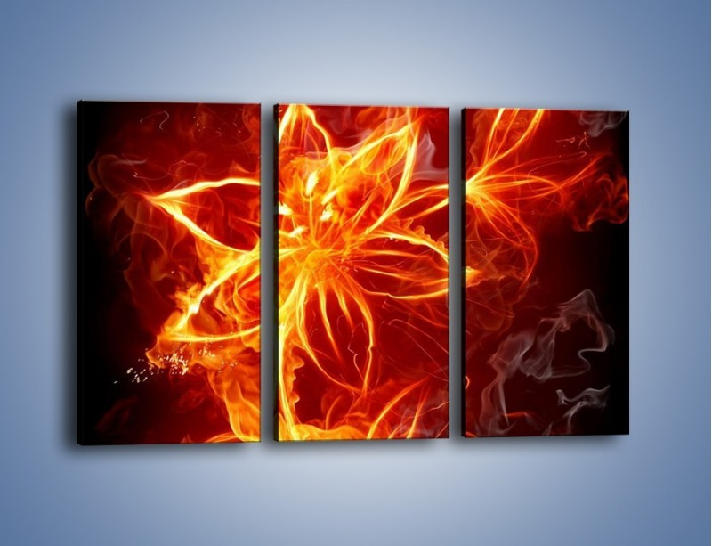 Obraz na płótnie – Spłonąć jak kwiat – trzyczęściowy GR527W2