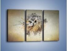 Obraz na płótnie – Czujne spojrzenie sowy – trzyczęściowy GR592W2