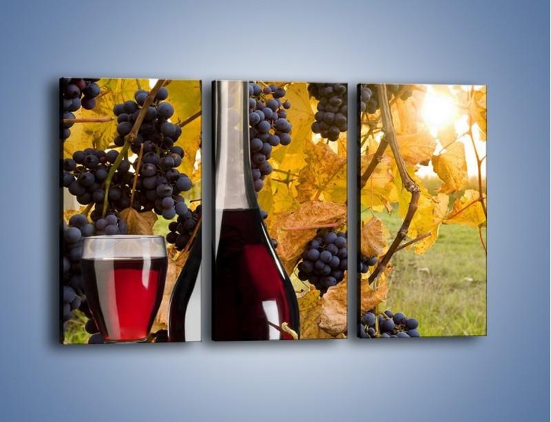 Obraz na płótnie – Wino wśród winogron – trzyczęściowy JN007W2