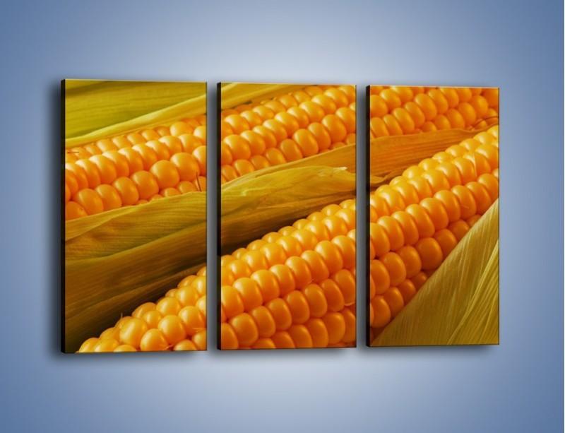 Obraz na płótnie – Kolby dojrzałych kukurydz – trzyczęściowy JN046W2