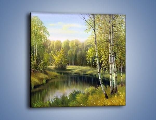 Obraz na płótnie – Tradycyjny leśny widok – jednoczęściowy kwadratowy GR285