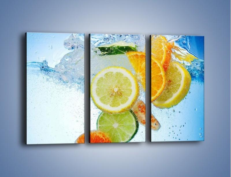 Obraz na płótnie – Zatopione plastry owoców – trzyczęściowy JN057W2