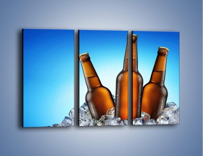 Obraz na płótnie – Szron na butelkach piwa – trzyczęściowy JN075W2