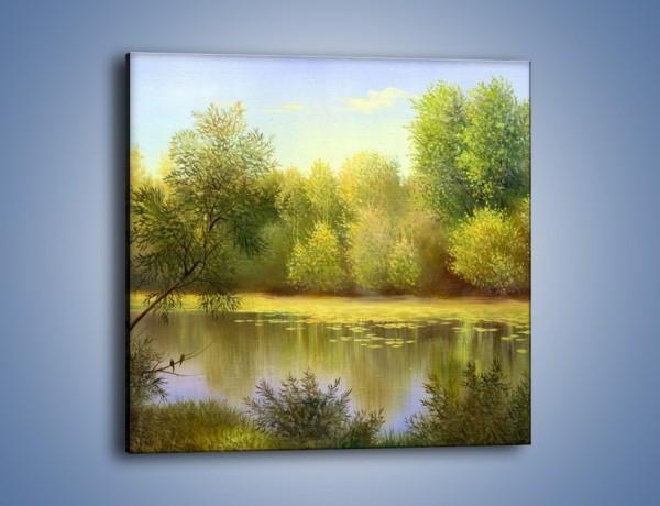 Obraz na płótnie – Wodny świat i drzewa – jednoczęściowy kwadratowy GR289