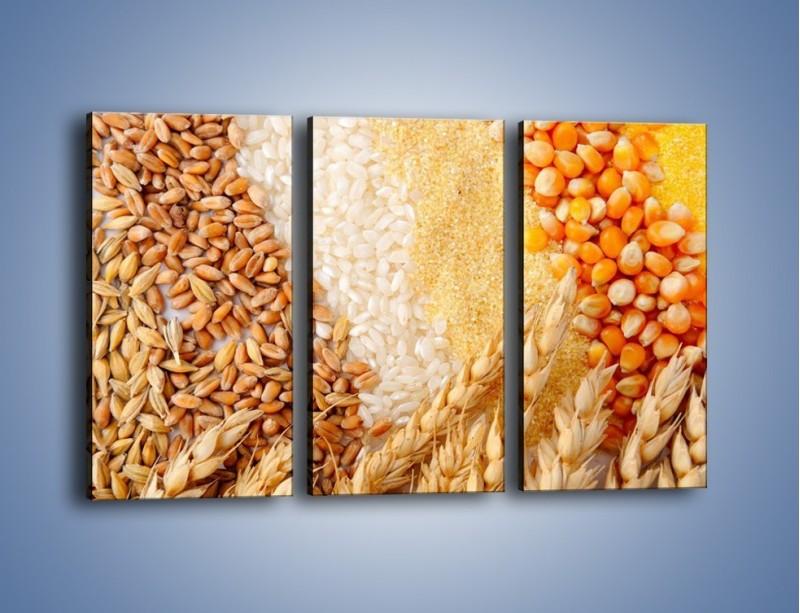 Obraz na płótnie – Ziarna pszenno-zbożowe – trzyczęściowy JN207W2