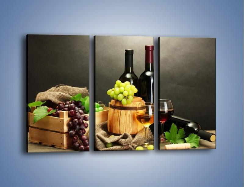 Obraz na płótnie – Wytrawne smaki wina – trzyczęściowy JN289W2