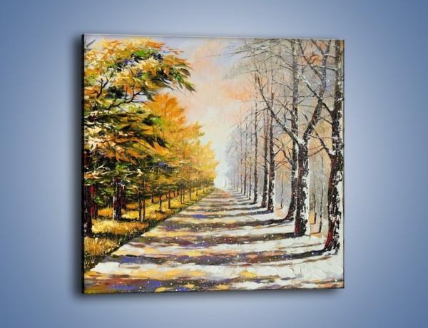 Obraz na płótnie – Trochę jesieni trochę zimy – jednoczęściowy kwadratowy GR292