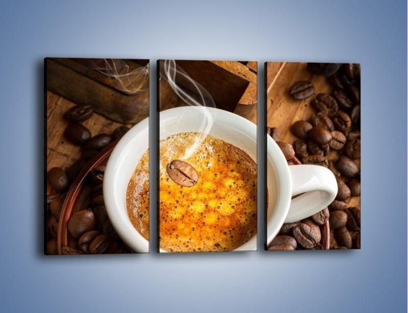 Obraz na płótnie – Ziarna zatopione w kawie – trzyczęściowy JN416W2