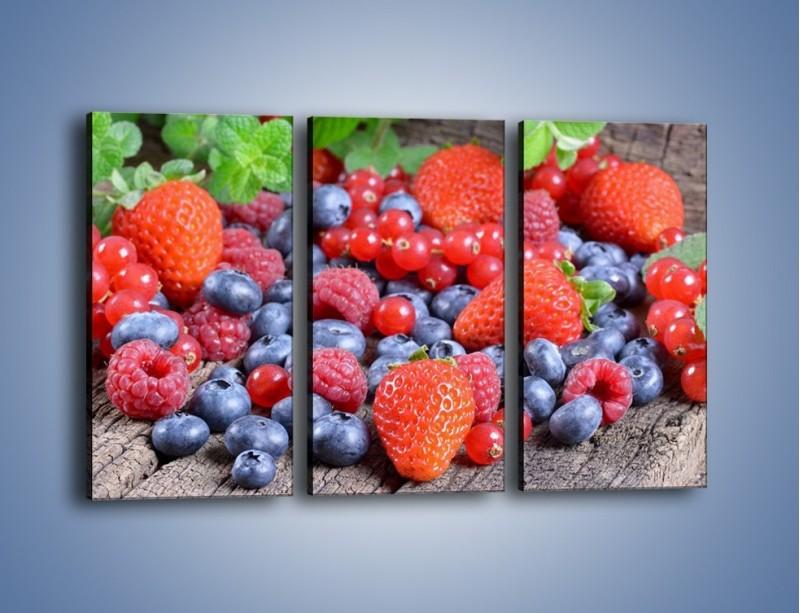 Obraz na płótnie – Owoce z działki – trzyczęściowy JN422W2