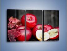 Obraz na płótnie – Czerwone jabłka późną jesienią – trzyczęściowy JN619W2