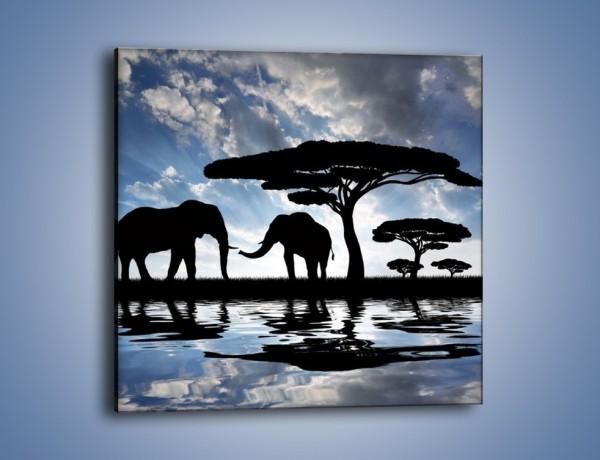 Obraz na płótnie – Nierozłączna para słoników – jednoczęściowy kwadratowy GR310