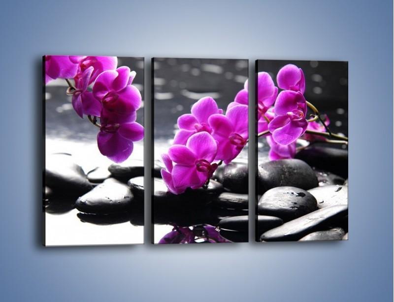 Obraz na płótnie – Dotyk kamienia i storczyka – trzyczęściowy K526W2