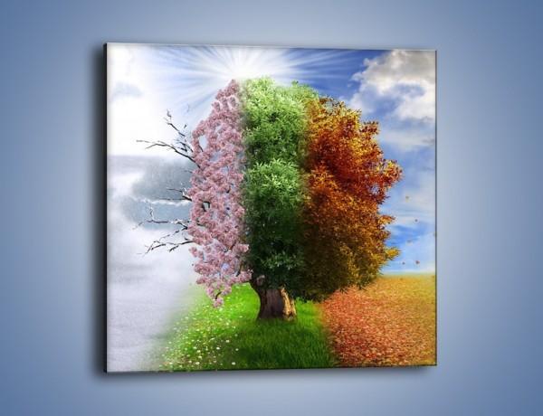 Obraz na płótnie – Cztery pory roku – jednoczęściowy kwadratowy GR333