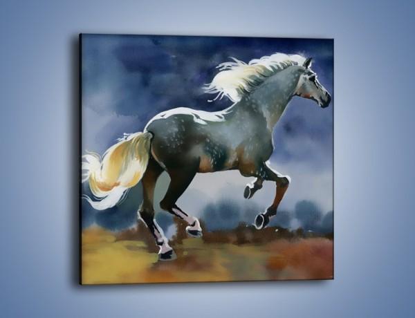Obraz na płótnie – Bieg z koniem przez noc – jednoczęściowy kwadratowy GR339