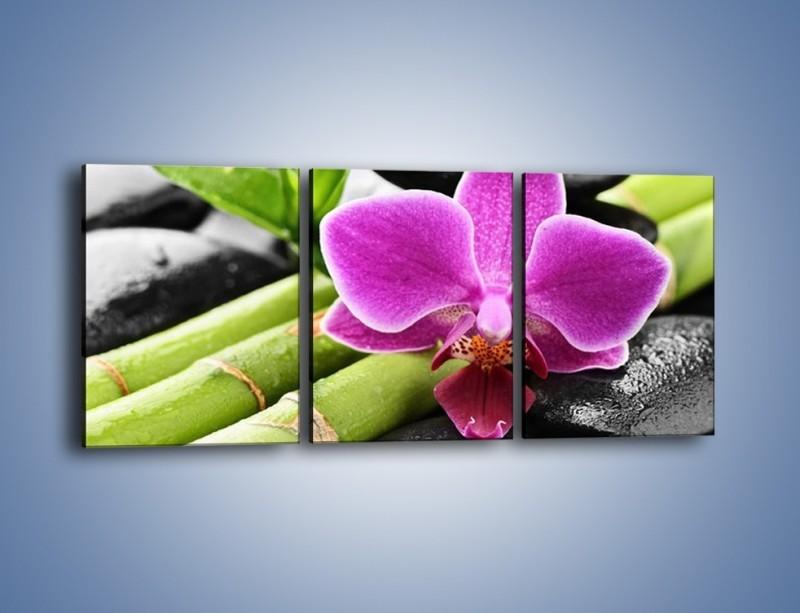 Obraz na płótnie – Idealnie ułożony kwiat – trzyczęściowy K931W2