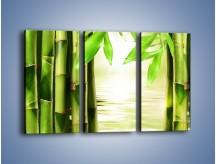 Obraz na płótnie – Bambusowe liście i łodygi – trzyczęściowy KN027W2