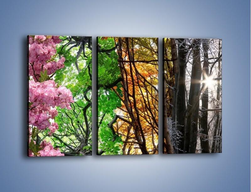Obraz na płótnie – Drzewa w różnych kolorach – trzyczęściowy KN037W2
