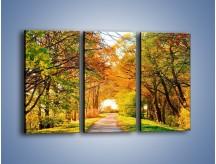 Obraz na płótnie – Jesienna drogą – trzyczęściowy KN064W2