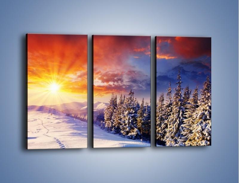 Obraz na płótnie – Urok zimowej pary – trzyczęściowy KN098W2