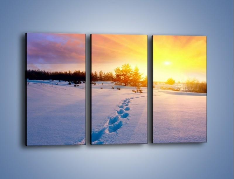 Obraz na płótnie – Ślady na śnieżnym puchu – trzyczęściowy KN1015W2